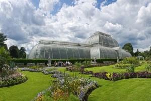 Kew Gardens - una dintre cele mai mari gradini botanice din lume