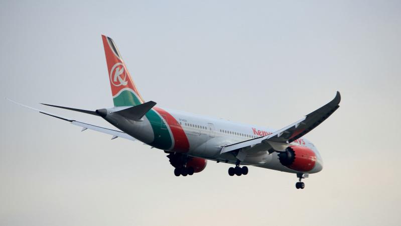 Migrant căzut din avion la un metru să zdrobească un rezident din Clapham, Londra.