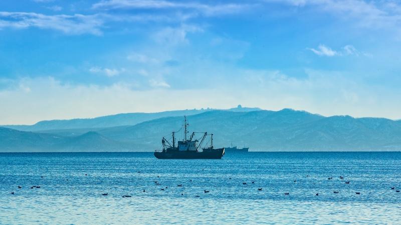 Navele britanice vor proteja apele țării în caz de Brexit fără acord