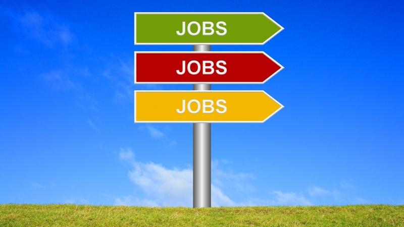 Criză fără precedent de forță de muncă în UK!!! Ce domenii sunt afectate?