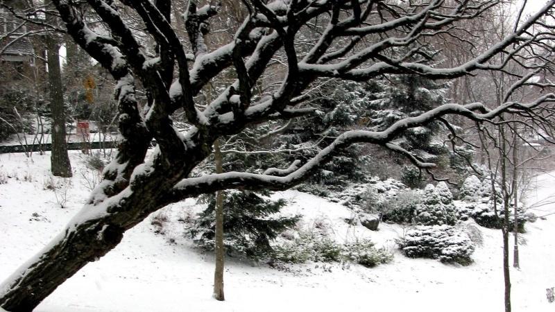 Care este data prevăzută pentru prima ninsoare din Marea Britanie în acest an?